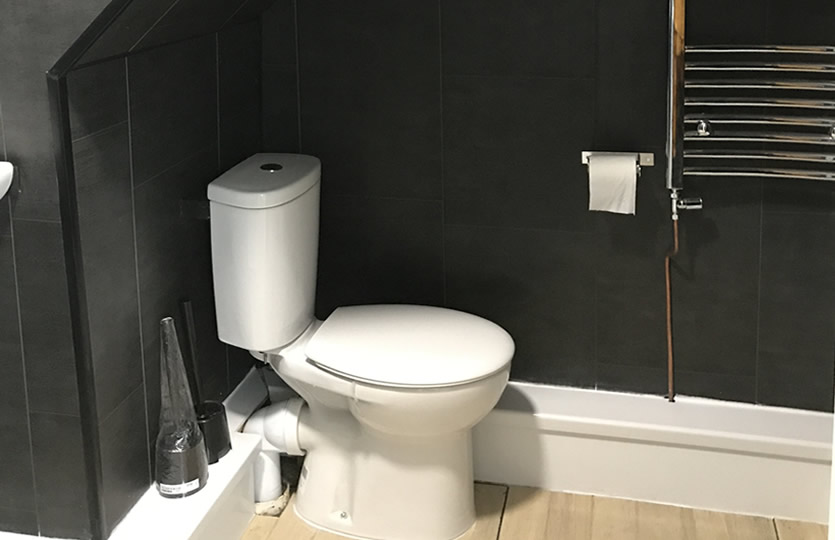 Downstairs Shower & Toilet